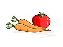 Cenouras e tomate ilustração do vetor