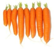 Cenouras em uma linha Imagem de Stock