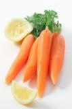 Cenouras frescas Fotos de Stock Royalty Free