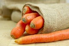 Cenouras frescas Fotografia de Stock Royalty Free
