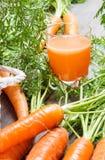 Cenouras frescas e suco saud?vel Imagens de Stock Royalty Free