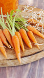 Cenouras frescas em uma placa de madeira Imagem de Stock