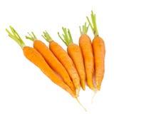 Cenouras frescas isoladas imagem de stock