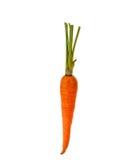 Cenouras frescas isoladas foto de stock