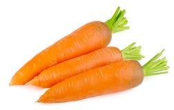 Cenouras frescas no fundo branco Imagem de Stock