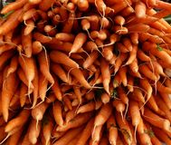 Cenouras frescas no mercado molhado Imagem de Stock