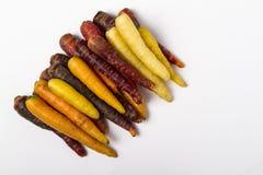 Cenouras Multi-coloridas frescas Imagem de Stock