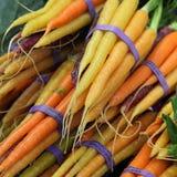 Cenouras orgânicas Imagem de Stock