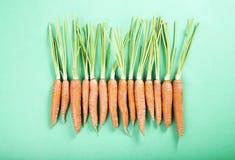 Cenouras orgânicas frescas Fotos de Stock Royalty Free