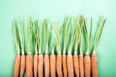 Cenouras orgânicas frescas Imagens de Stock Royalty Free
