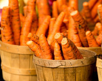Cenouras orgânicas na cesta Fotografia de Stock