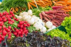 Cenouras, rabanete e outros vegetais para a venda Fotografia de Stock