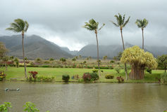 Cenário tropical de Maui, Havaí Fotos de Stock