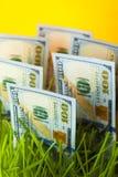 Cent billets d'un dollar dans l'herbe verte Images stock