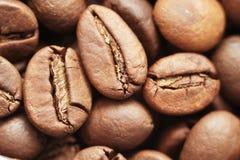 Cent billets d'un dollar faits de grains de café au-dessus du fond blanc Photographie stock