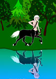 Centaur Royalty Free Stock Images