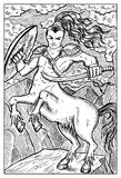 Centaur. Engraved fantasy illustration. Centaur. Human warrior with horse body. Fantasy magic creatures collection. Hand drawn vector illustration. Engraved line Stock Images