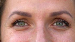 Centelleo macro de los ojos del primer almacen de video