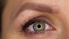 Centelleo macro del ojo del primer almacen de video
