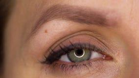 Centelleo macro del ojo del primer metrajes