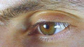 Centelleo masculino del ojo humano del primer macro Cámara lenta metrajes