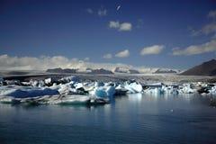 Centenares de icebergs Fotografía de archivo libre de regalías