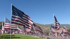 Centenares estabilizados del recorrido de banderas americanas (parte #1) almacen de video