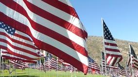 Centenares estabilizados del recorrido de banderas americanas (parte #2) almacen de metraje de vídeo