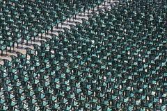 Centenas de cadeiras verdes plásticas arranjadas em seguido Fotos de Stock