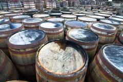 Centenas de tambores de madeira usados envelhecendo o uísque imagem de stock