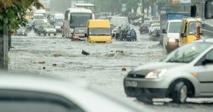 center översvämning frankfurt germany januari för stad 2011 arkivfoto