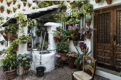 Entrance to a house in the center of the city of Córdoba completely covered with flower pots.