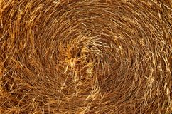 Center bale straw Stock Image