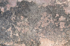 Center of brown-red flagstone. (selected focus Royalty Free Stock Photo