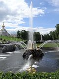 Russia, Peterhof. Samson Fountain - a beautiful fountain, which stands at the foot of the Grand Cascade. The center of the fountain is the figure of Samson, who stock photography