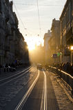 Center of Lviv in New Year's Eve. In Lviv, on the eve of the new year completely melted the snow and cold weather abruptly changed to the warm spring weather on Stock Photo