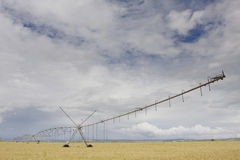 A center modern pivot irrigation system Stock Images