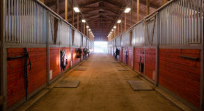 Center Path Through Horse Paddock Equestrian Ranch Stable Stock Image