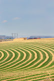 Center pivot irrigated farm field. Showing the alternating rows of planting to allow for the rotation along the circular lines of the wheeled sprinkler system Stock Photos