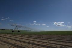 Center pivot irrigation 1 Stock Images