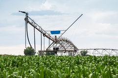 Center Pivot Irrigation System in Cornfield Royalty Free Stock Photography