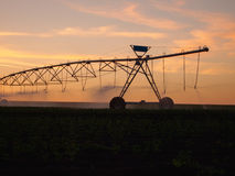 Center pivot irrigation system in the farm field at sunset Royalty Free Stock Image