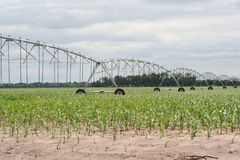 Center pivot irrigation well  Stock Photos