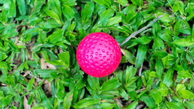 Center point. Red ball in the midlle of the green grass stock photos