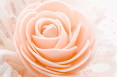 Center of rose. royalty free stock photo