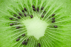 Center slice of fresh kiwi fruit. Close up center slice of fresh kiwi fruit Stock Image