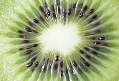 Center of a Sliced Kiwifruit Stock Photography