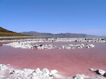 Center of the Spiral Jetty Royalty Free Stock Image