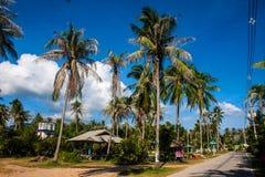 Center of Thong Sala village Royalty Free Stock Photos