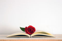 A centered open book with a red rose flower on it Royalty Free Stock Photography